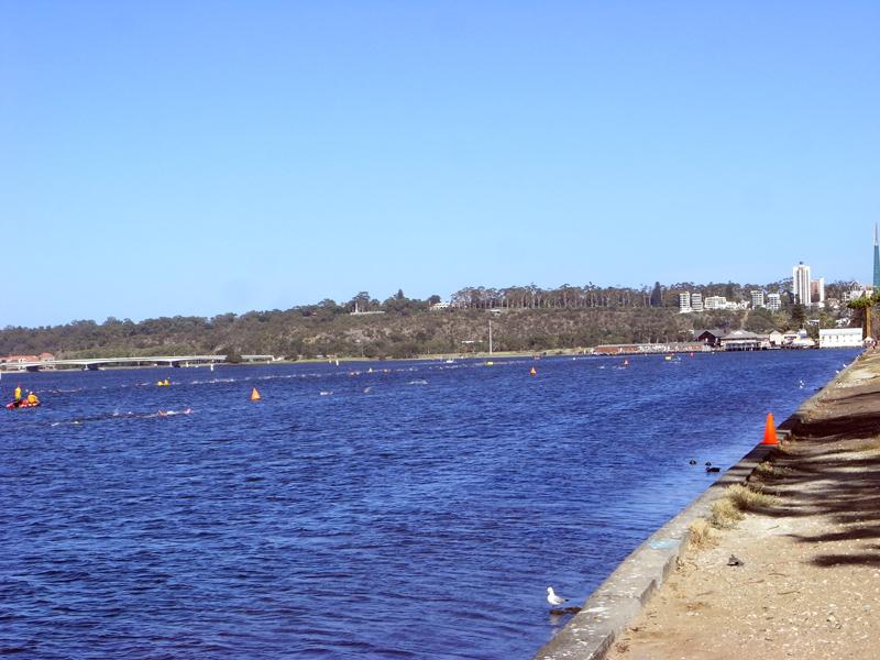 Swimcourse